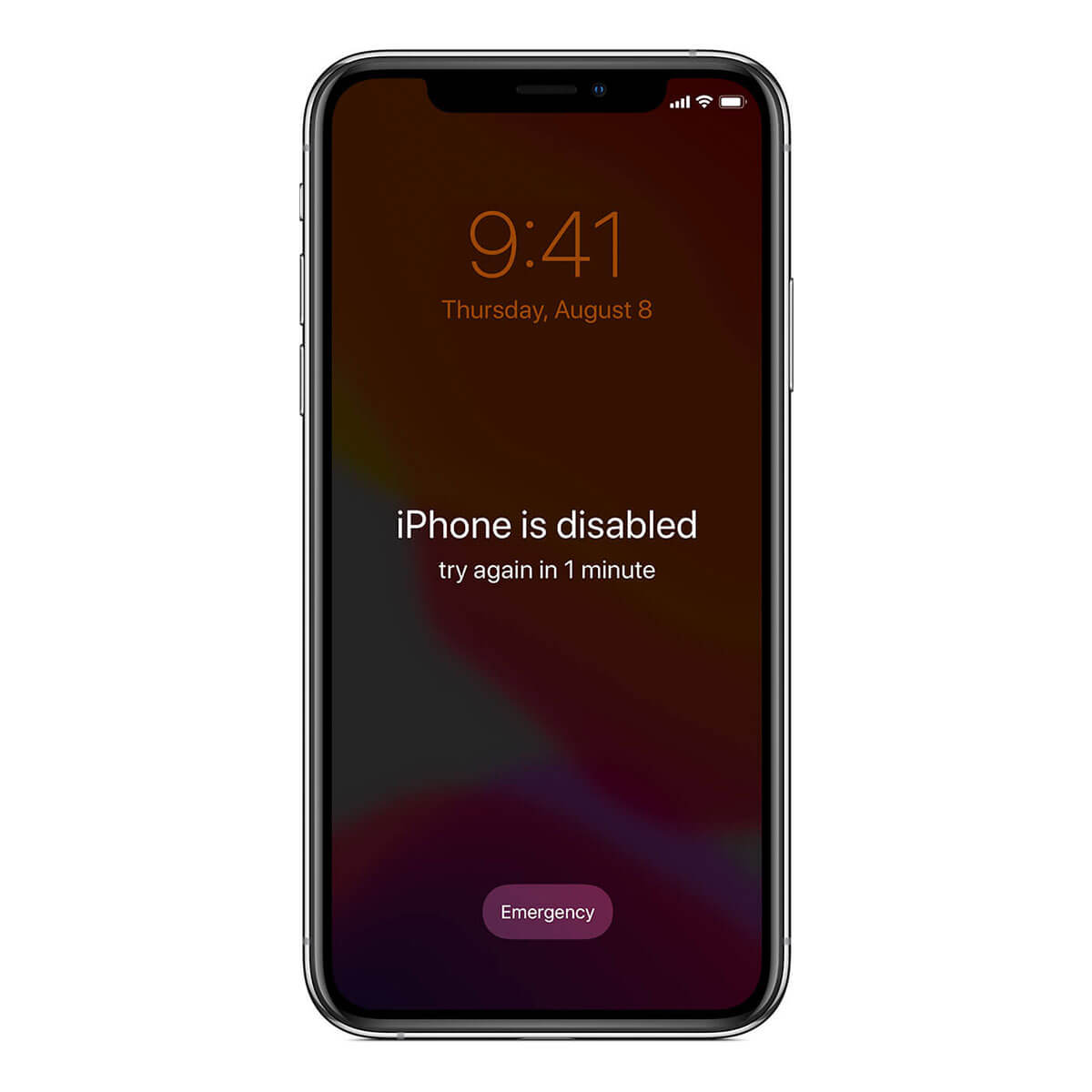 Iphone XS Disabled Passcode